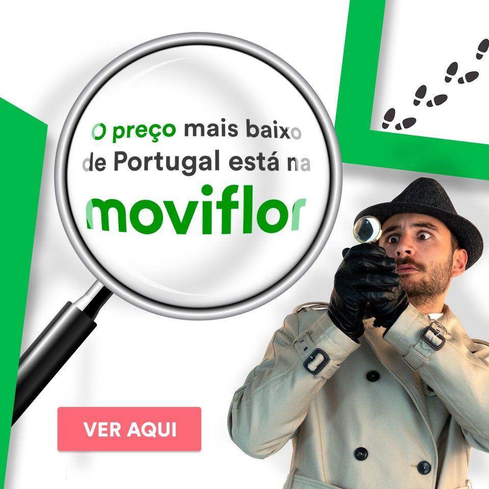 O preço mais baixo de Portugal está na Moviflor