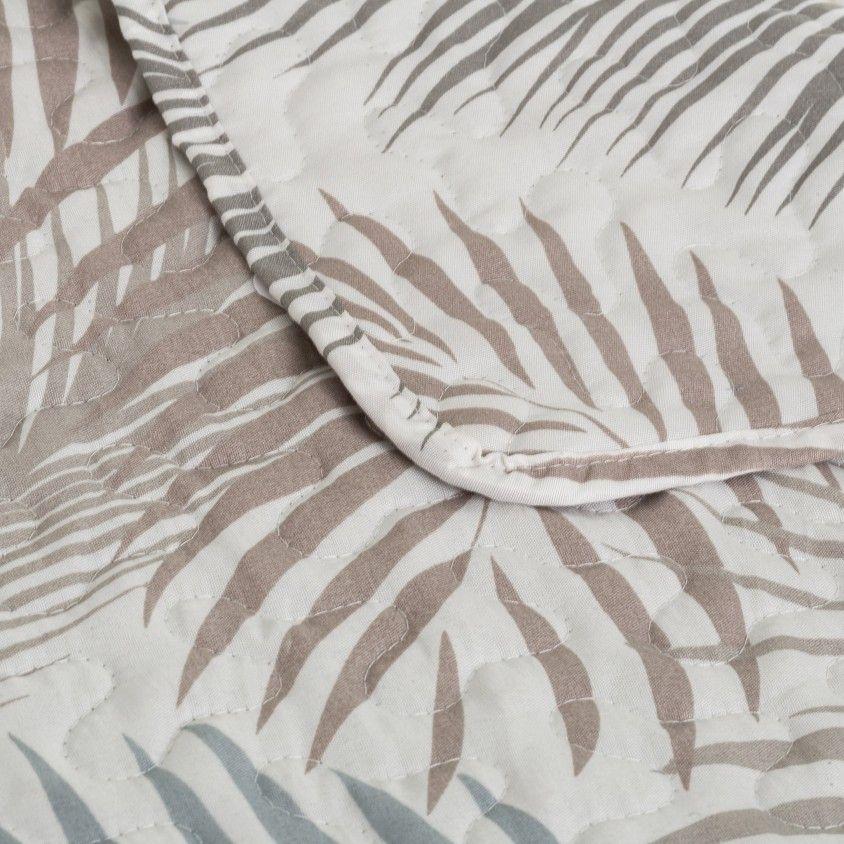 Colcha Palms